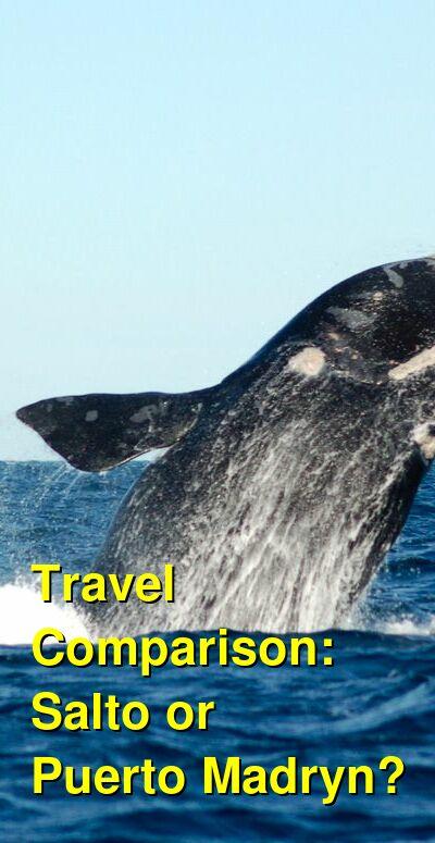 Salto vs. Puerto Madryn Travel Comparison
